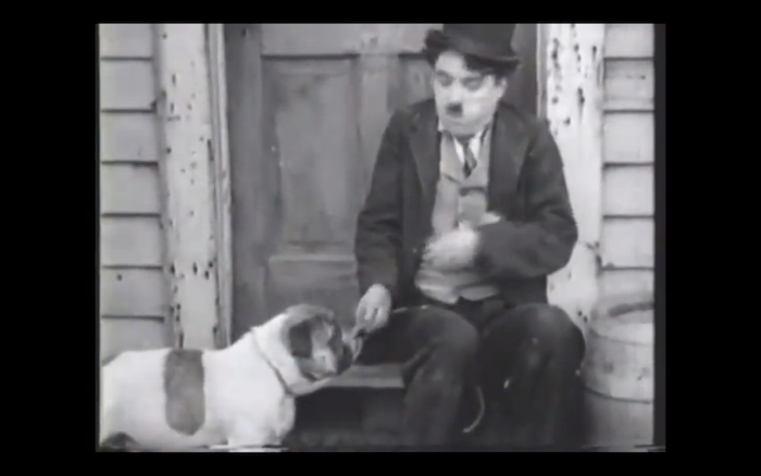 The Champion (1915) (English Bulldog)