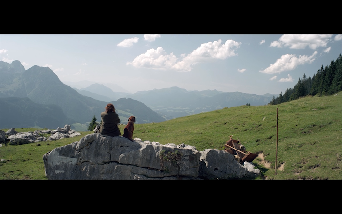 The Wall (2012) (Bavarian Mountain Hound)