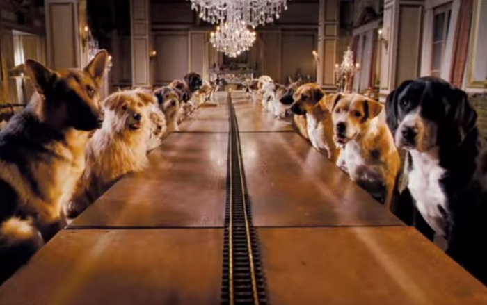 Hotel for Dogs (2008) (German Shepherd Dog, mixed breeds, etc.)