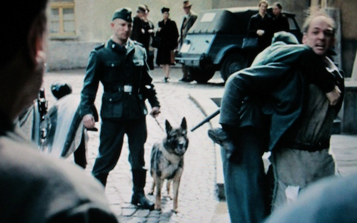 The Book Thief (2013) (German Shepherd Dog)